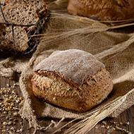 Le Rustic aux graines