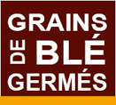 grains-bles-germes