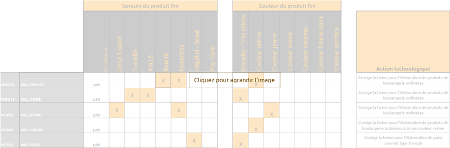 correcteur-techno-senso-mini